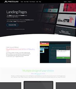 Landing Page SEO Service